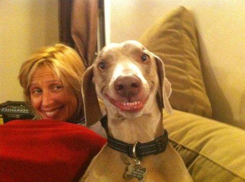 chien-sourit-pour-photo