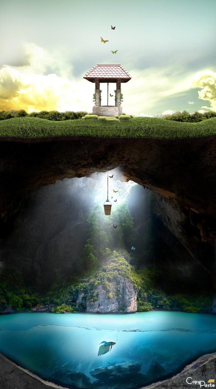 paradis-puits