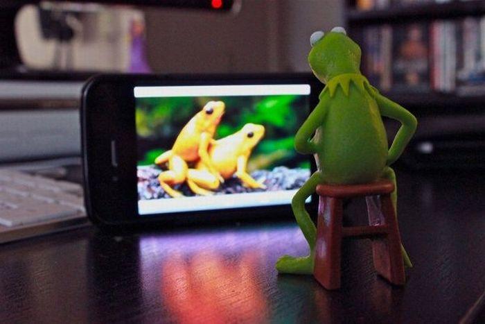 kermit-frog-regarde-porno