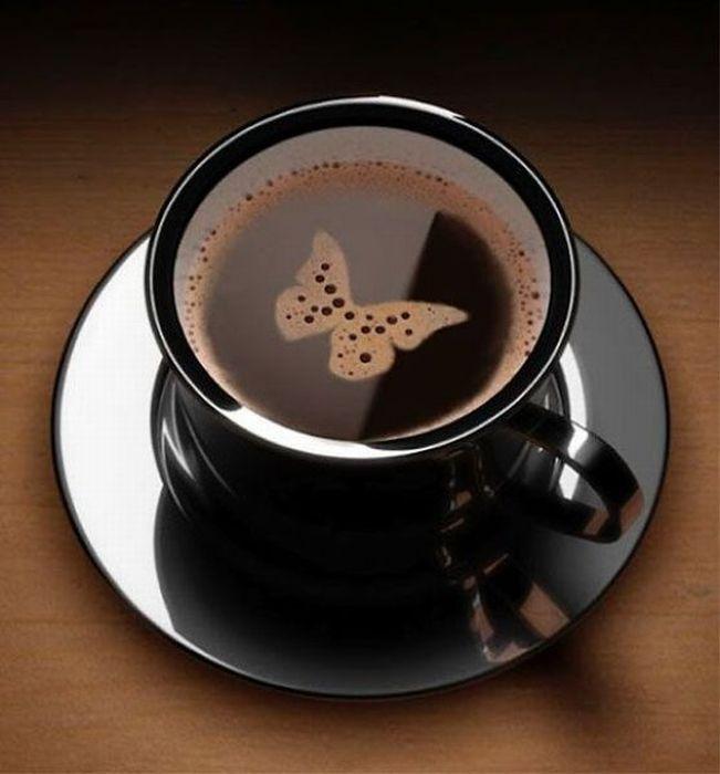 papillon-cafe