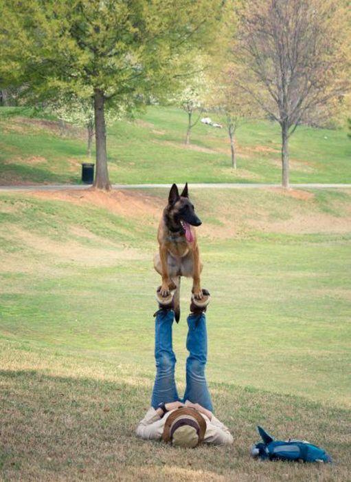 chien-equilibre-pieds-maitre