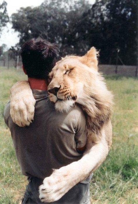 humain-lionne-amis-pour-vie