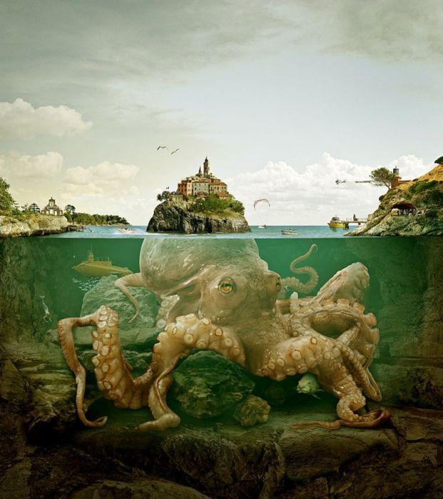 ile-kraken