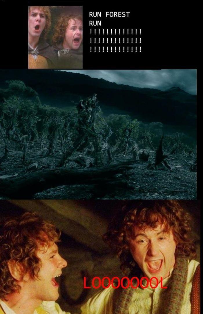 run-forest-run-version-seigneur-des-anneaux