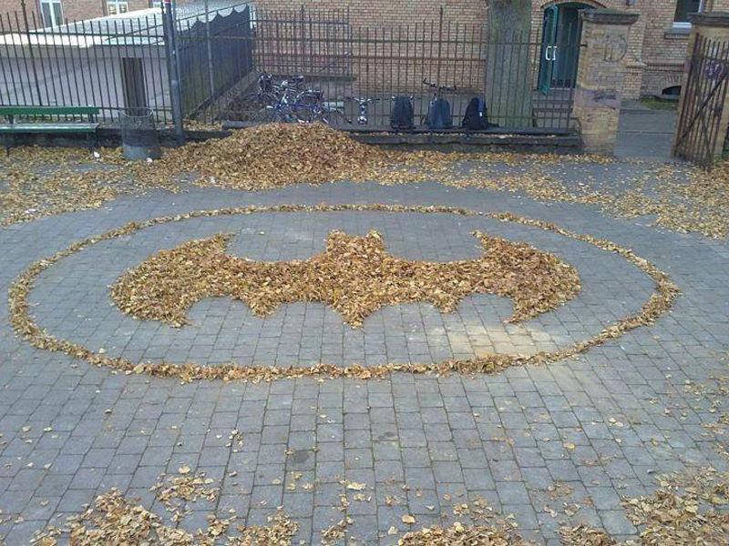 logo-batman-feuilles-arbre