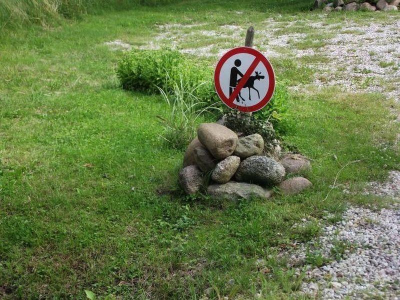 interdit-denculer-les-cerfs