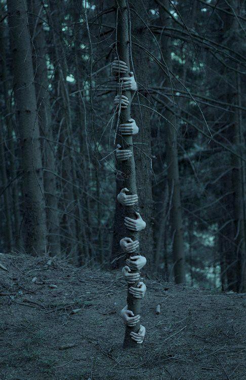 arbre-mains