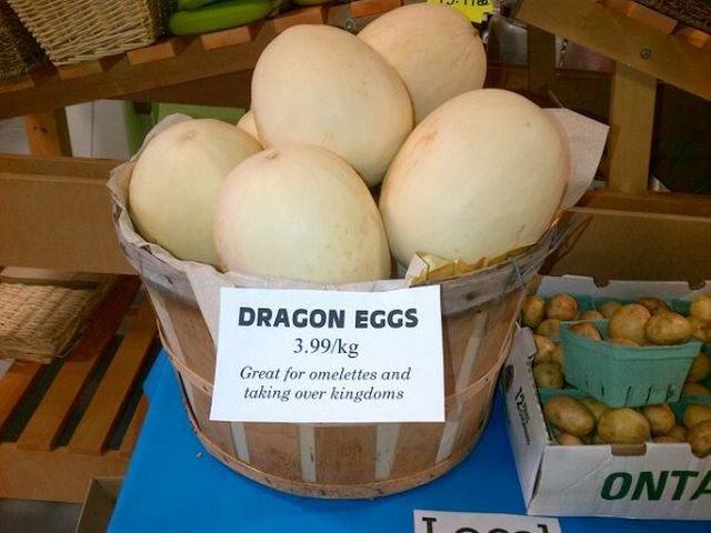 oeufs-dragons