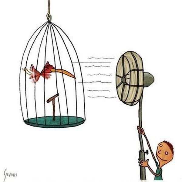 oiseau-vole-cage-ventilateur
