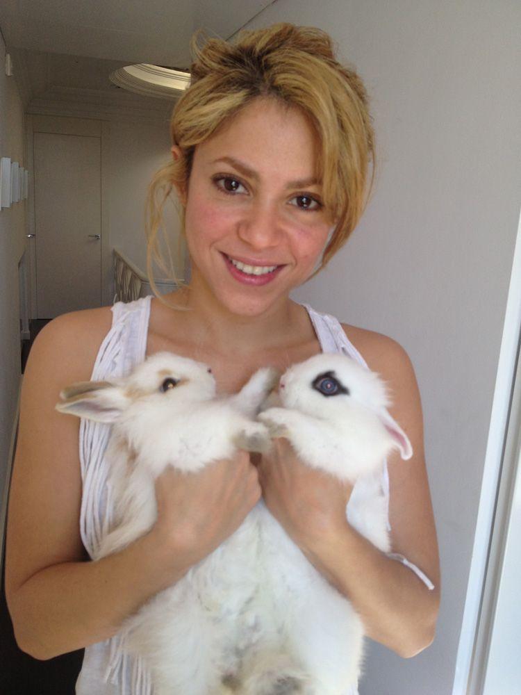 shakira-avec-2-lapins