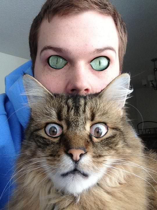 echange-doeils-avec-chat