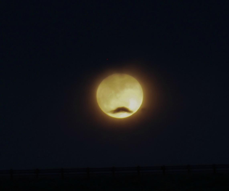 lune-moustache