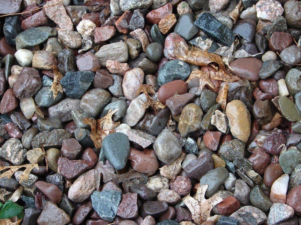 Image Trouvez la grenouille parmi les pierres