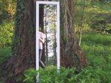 Un miroir dans les bois